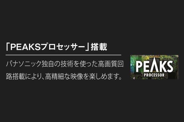 PEAKSプロセッサー