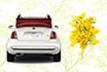 フィアット正規ディーラーではETC車載器(成約・先着200名)等のプレゼントキャンペーンを実施(3/7~3/31)
